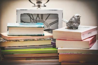 books-3786561__340.jpg