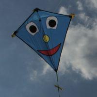 vlieger Eddy van Thijs' vliegerparadijs